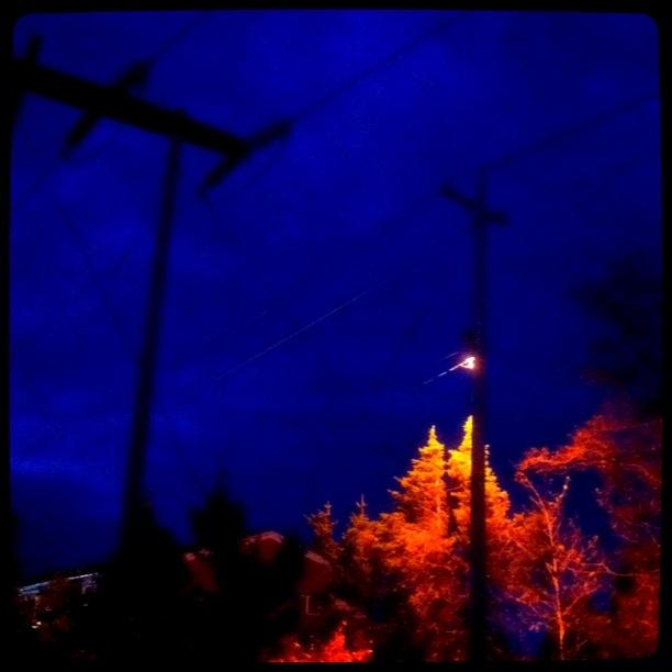 20111017-142031.jpg