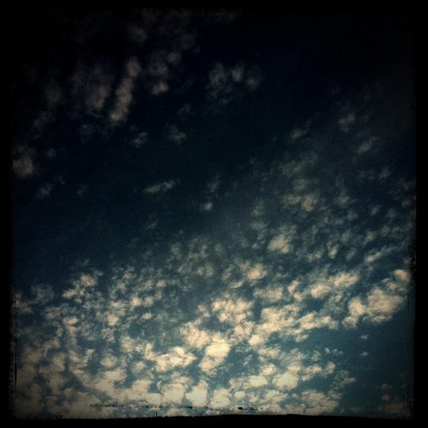 20111107-164407.jpg